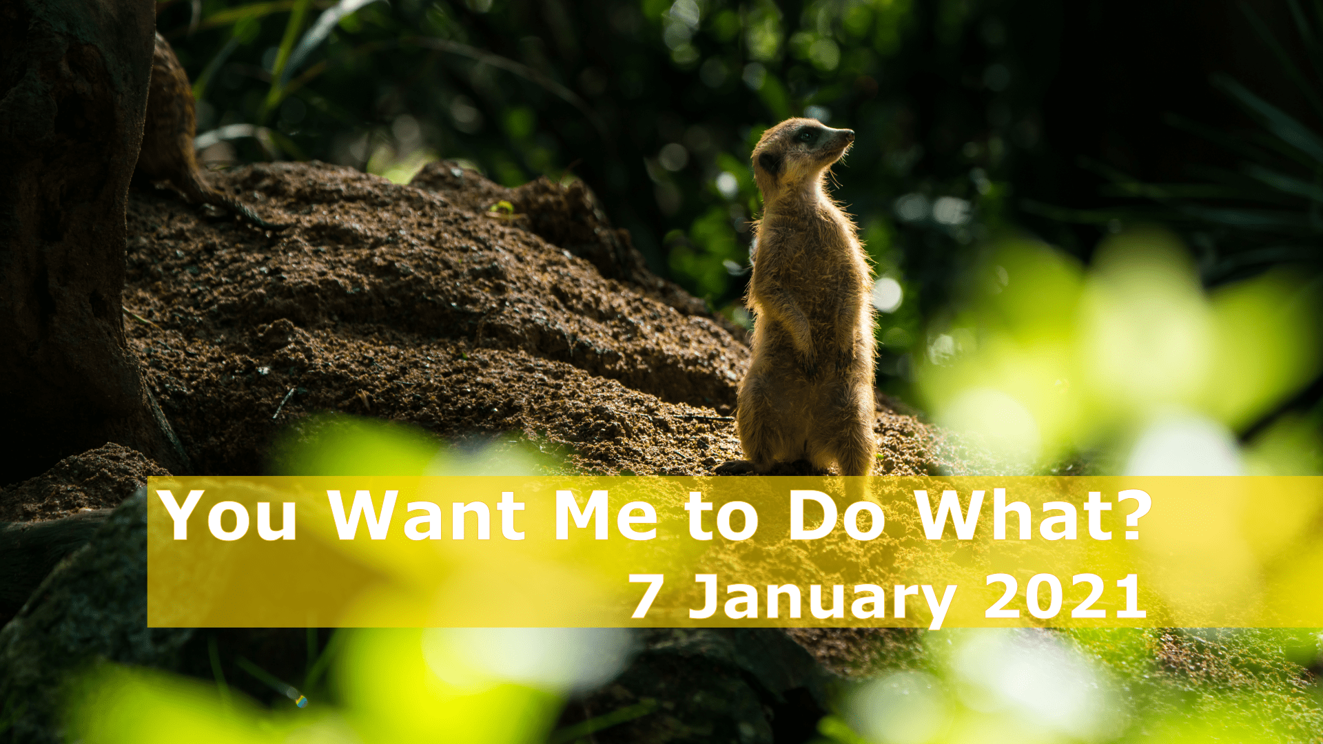 <span class='p-name'>You Want Me to do What? — 7 January 2021 Devotional</span>