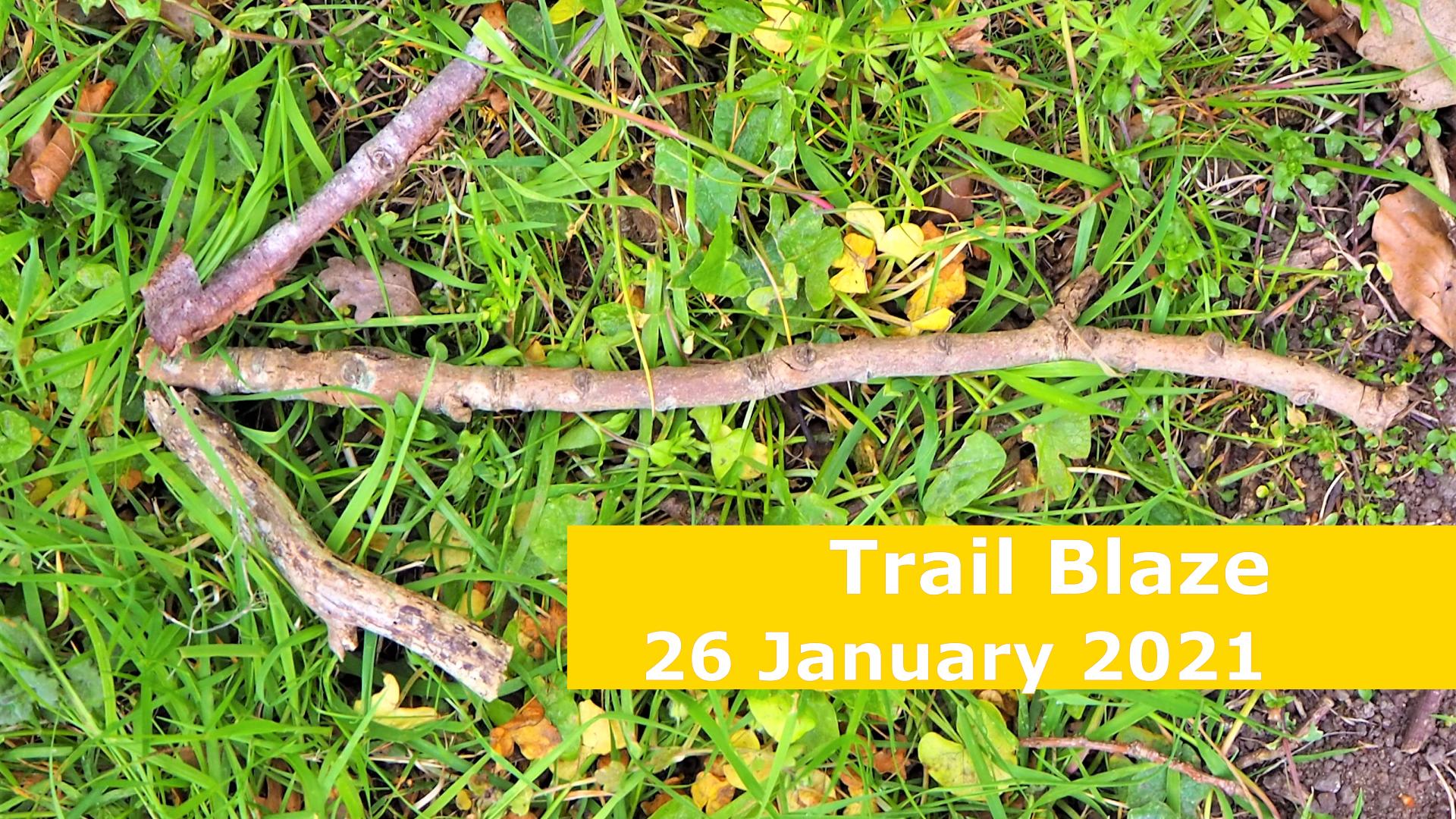 <span class='p-name'>Trail Blaze — 26 January 2021 Devotional</span>