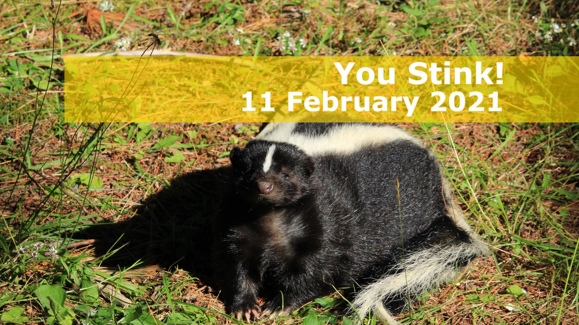 <span class='p-name'>You Stink! — 11 February 2021 Devotional</span>